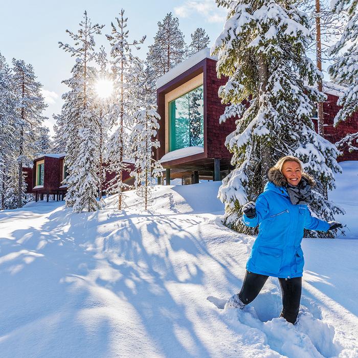 Arctic TreeHouse Hotel winter sun